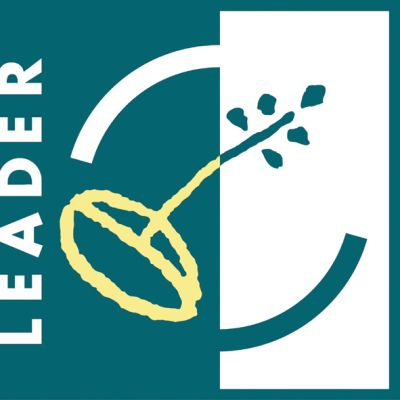 leader logo 318df